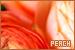 Colour: Peach: