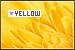 Yellow: